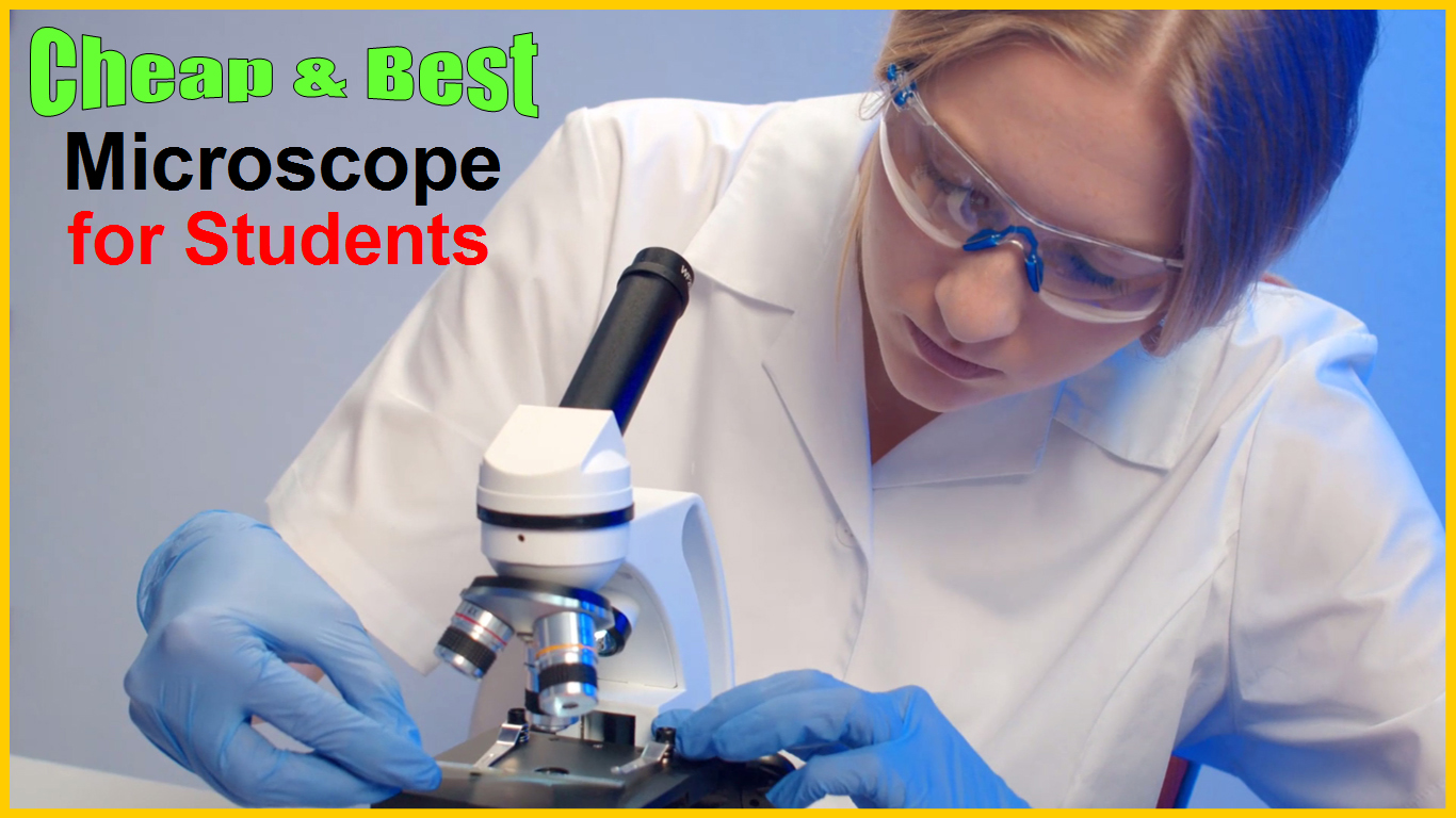 Best Microscope for Students in India from Best Microscope Brands